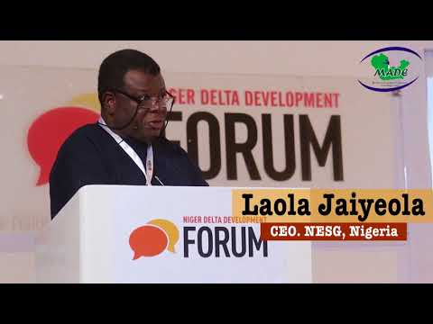 #NDDF2017: Why we must have responsible and responsive leadership in Nigeria - NESG CEO