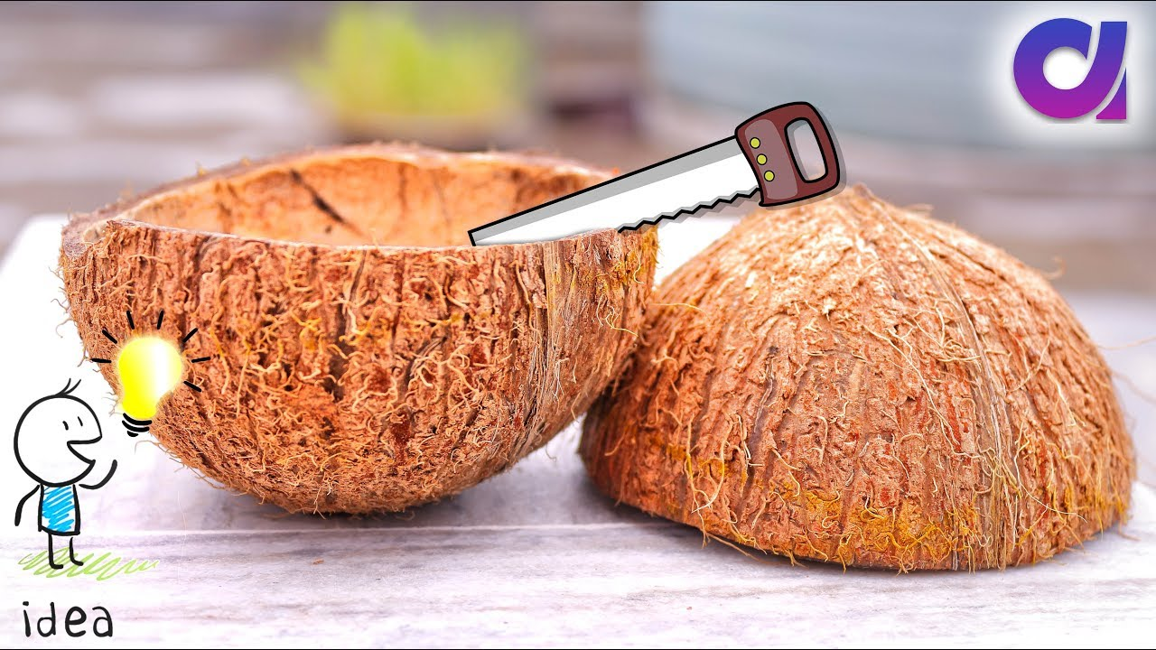 How to reuse waste coconut shell best out of waste ideas for Images of best out of waste things
