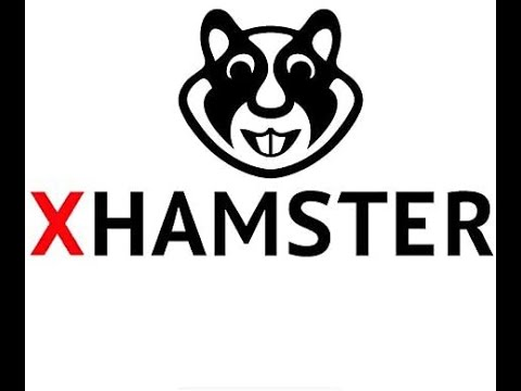 Hasmter x Free Hamster