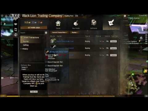 Guild Wars  Dragonhunter Trap Pve Build
