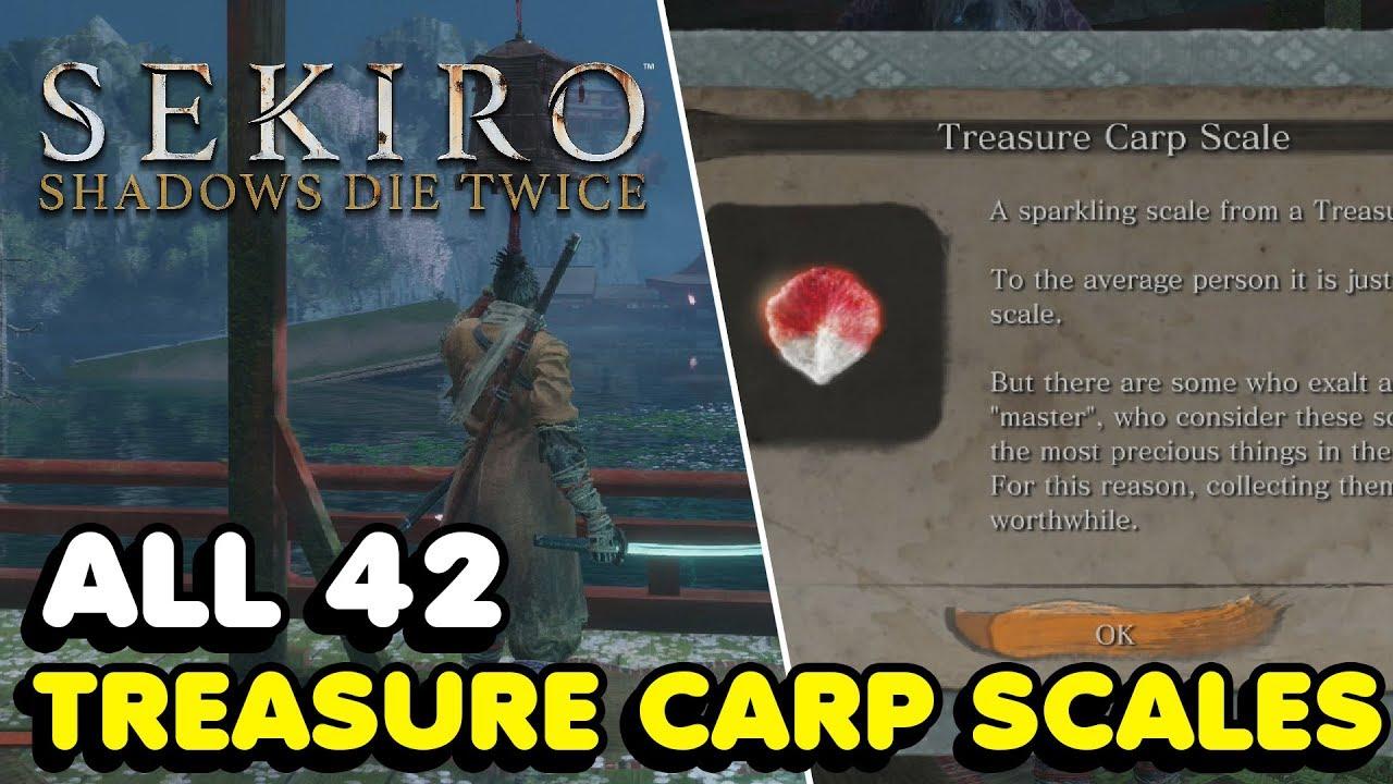Treasure Carp Scales