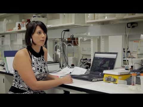 UQAM.tv   Visionnaire en sciences (Cynthia Torresilla, Biologie)