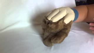 Hand Hairy puppet the