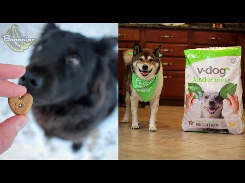 What I Feed My Vegan Dogs | V-Dog Vegan Dog Food Review