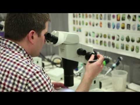 U of Pennsylvania, Dept of Biochemistry & Biophysics - Molecular Mechanisms in Medicine