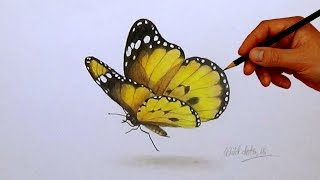 butterfly realistic easy drawing simple painting butterflies drawings draw 3d colored paintings pencil paint steps pencils sketch step cool illustration
