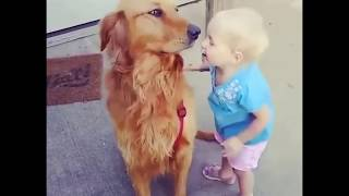 Funny Cute Animals 💙❤ 🐱😜🐶 , Animal Kingdom, Funniest Videos, sweet Popular Trend Tik Tok Musically