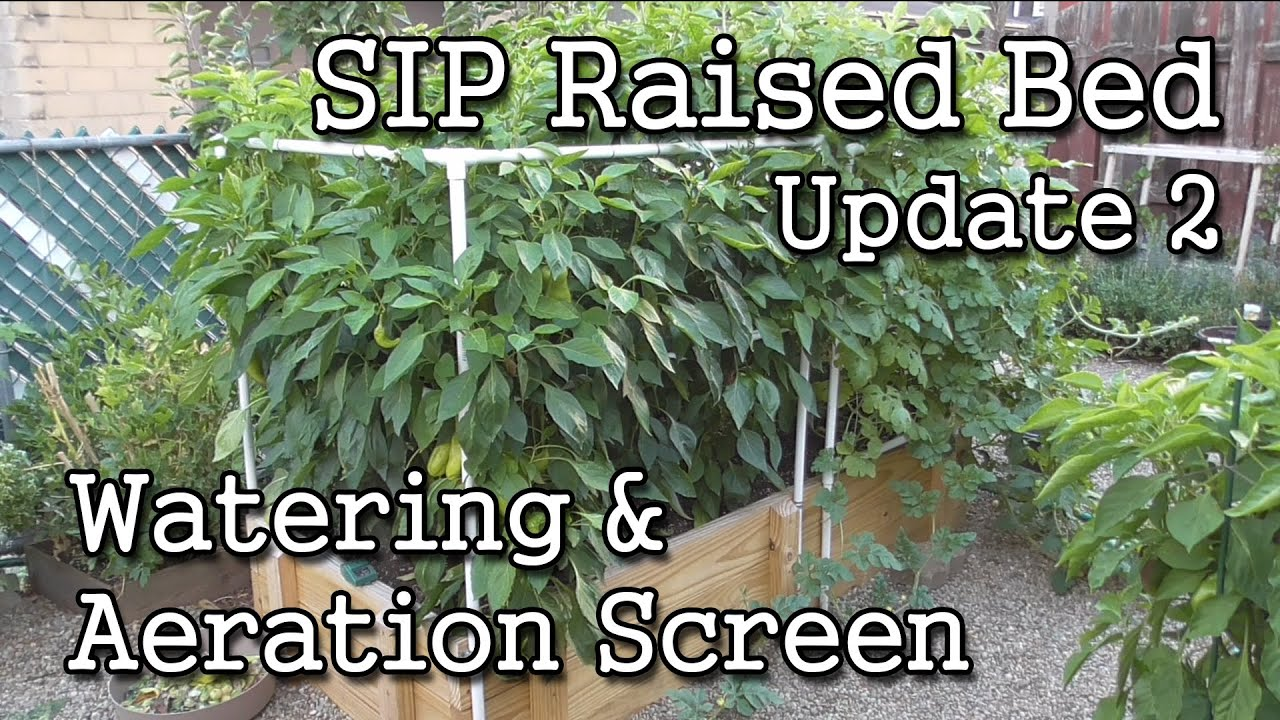 SIP BASICS: Self-Watering Sub-Irrigated Planter Gardening
