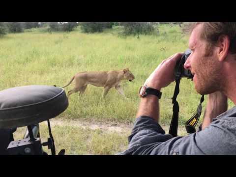 Traveler Experience: Botswana