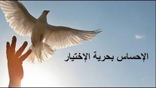 الإحساس بحرية الإختيار - الأستاذ يوسف الحماوي - الحلقة 24