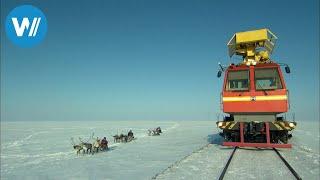 Die Polarbahn (360° - GEO Reportage)