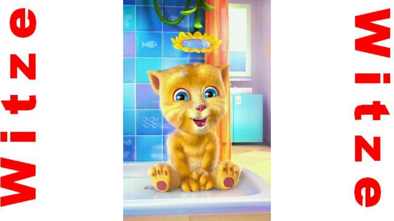 App Sprechende Katze
