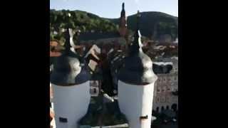 Ich hab mein Herz in Heidelberg verloren  Die Wikinger