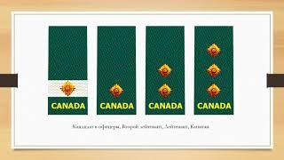 Знаки различия армии Канады