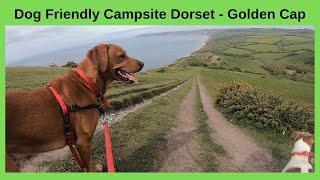 Dog friendly campsite Dorset - Seatown, Golden Cap