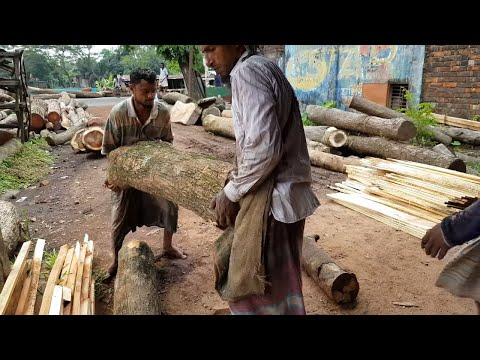 Whole Day with Wood Cutting Sawmill।Logging Sawmill Daily Works।Quality of Wood for Furniture Make