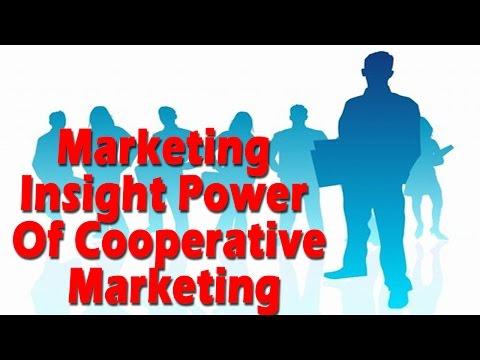 Social entrepreneurship: Marketing Insight Power Of Cooperative Marketing