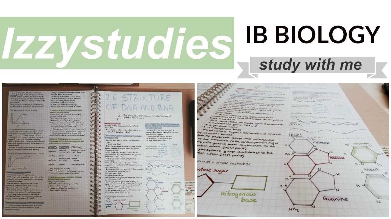 ib biology hl Preface[edit] this book has been created as a study guide for ib students in the biology higher level course however, this resource may prove useful for standard level biology students the higher level material is clearly marked the book has been divided into syllabus topics and outcomes to aid revision.