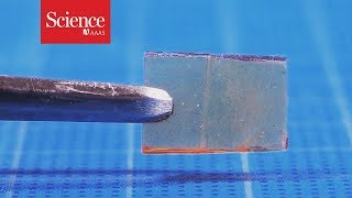 This new material heals—not cracks—under pressure