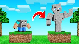 MINECRAFT But We Turned ROCKS INTO PETS!