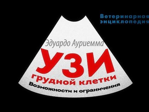 СПРАВОЧНИК ПО ТАРИФАМ И УСЛУГАМ UPS, РОССИЯ, январь 2017 г