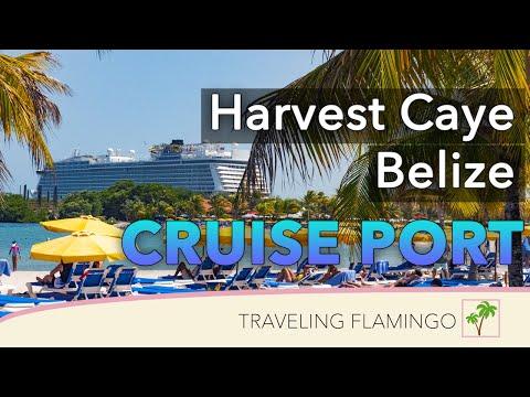 🌴Harvest Caye, Belize 🇧🇿 | Island Tour!