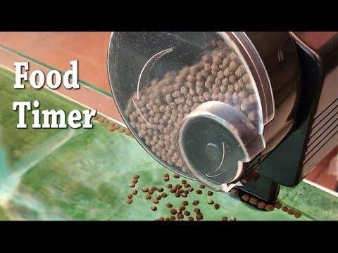 Food Timer