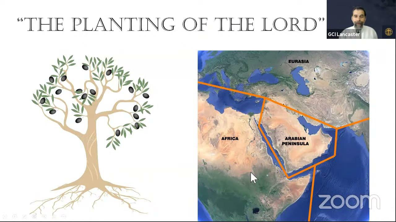 Messiah's Vine