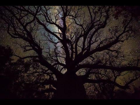 Night skies of the Kimberley, Western Australia (Time lapse)