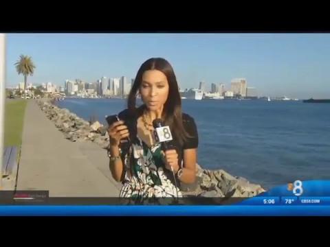 CBS News 8 San Diego (short version)