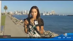 CBS News 8 San Diego (short version)