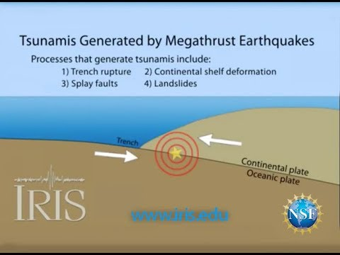 Tsunamis Generated by Megathrust Earthquakes