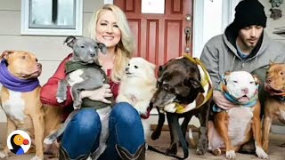 Woman That Saved OVER 100 Dogs, Surprised By SPECIAL Pup   The Dodo