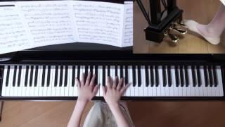 使用楽譜;ぷりんと楽譜・上級(採譜者:内田美雪)、 2017年6月11日 録画.