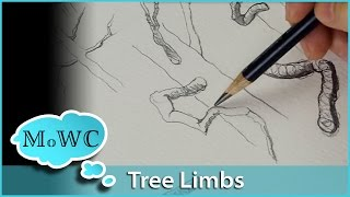 Tips for Drawing or Painting Foreshortened Tree Limbs