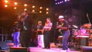 Blues Brothers Band - Hold on I'm comin'