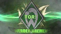 Eure Kneipe Berlin Werder Warmup