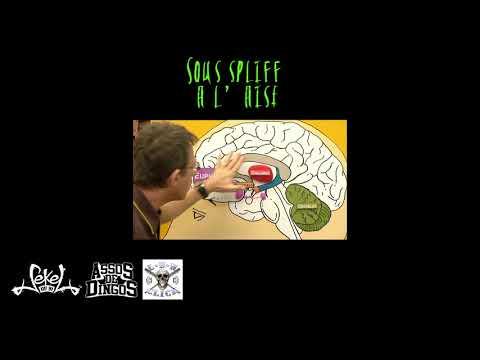 Youtube: Sous spliff à l'aise –  Sekel du 91 (Lbn – A2d) – Rap fançais 2018