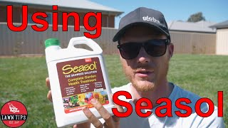 Why You Should Use Seasol On Your Lawn