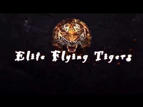 """""""Gta 5 Online"""" Elite Flying Tigers ( Jet Crew ) ( Now Recruiting ) {Read Desc}"""
