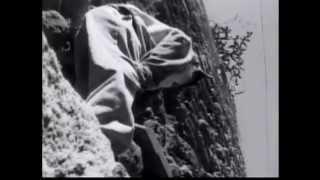 Amarrados (Tied Up) 2002 cortometraje short film de Amat Escalante