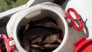 Рыбалка 2016 ловим щуку на спининг на Ангаре