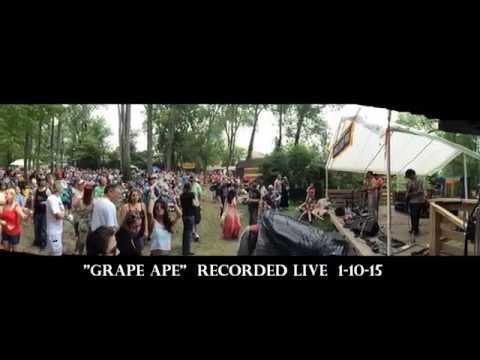 GRAPEAPE (live!)
