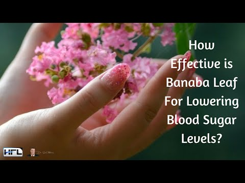 How Effective is Banaba Leaf For Lowering Blood Sugar & Glucose Levels?