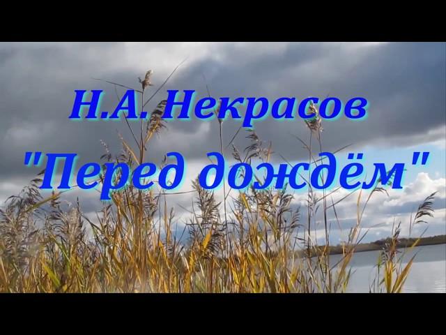 Изображение предпросмотра прочтения – ТатьянаСемикова читает произведение «Перед дождем» Н.А.Некрасова
