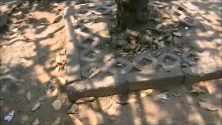 видео Обзор города Хошимин во Вьетнаме