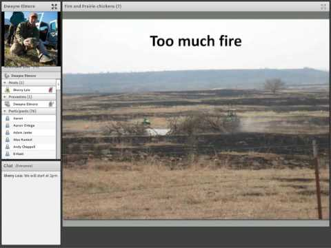Webinar: Prarie grouse and fire