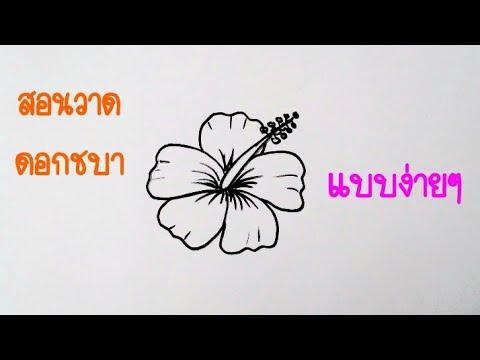 วาดรูป ดอกชบาง่ายๆ   How to draw Hibiscus flower Step by Step