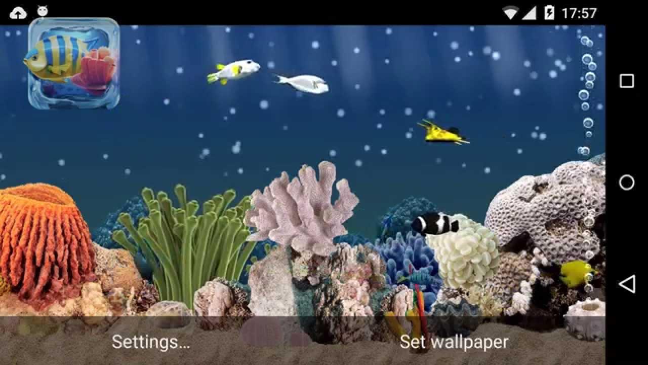 Aquarium 3d Live Wallpapers Youtube