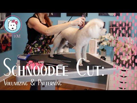 Schnoodle Cut: Volumizing and Patterning